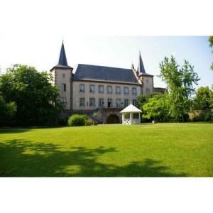 chateau-de-la-confrerie-saint-etienne-de-kientzhei-39430-600-600-F